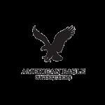 American-Eagle-1024x1024